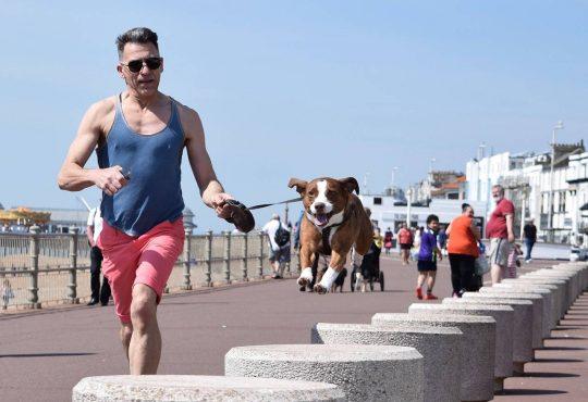 Sport con cane