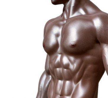 mappa muscolare