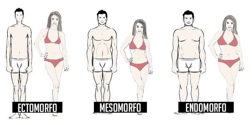 programma di dieta ectomorfo grasso magro