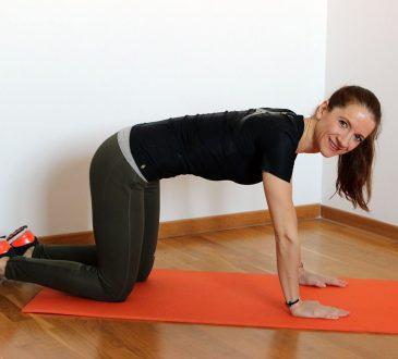 esercizi schiena