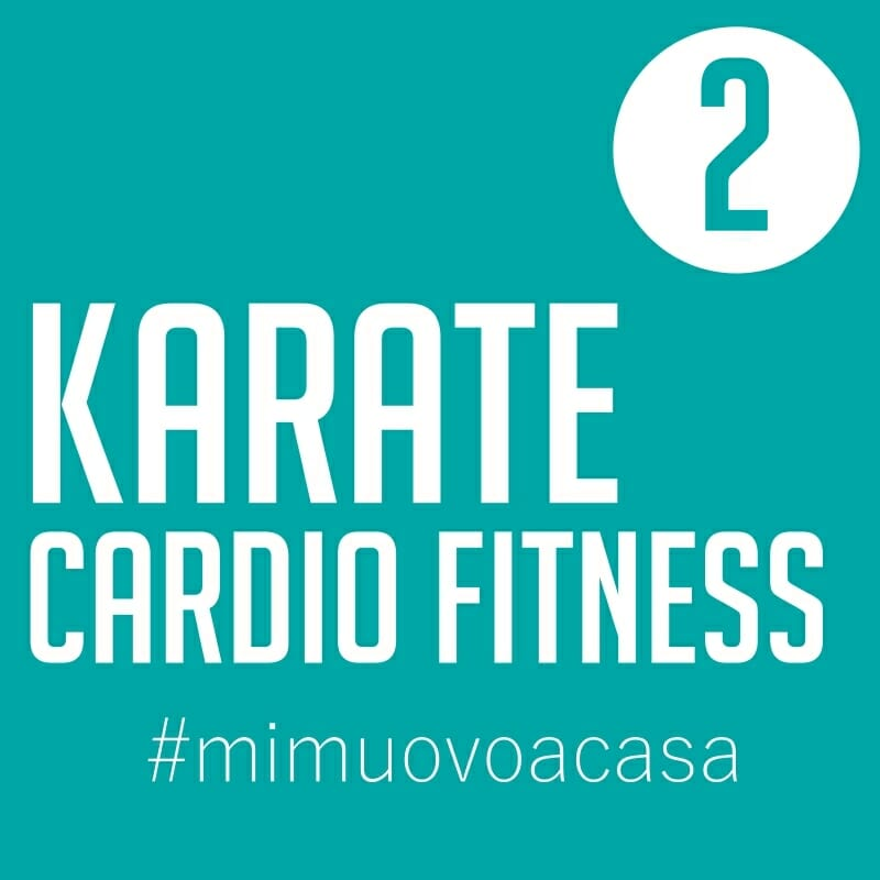 karate-cardio-fitness-video-img2