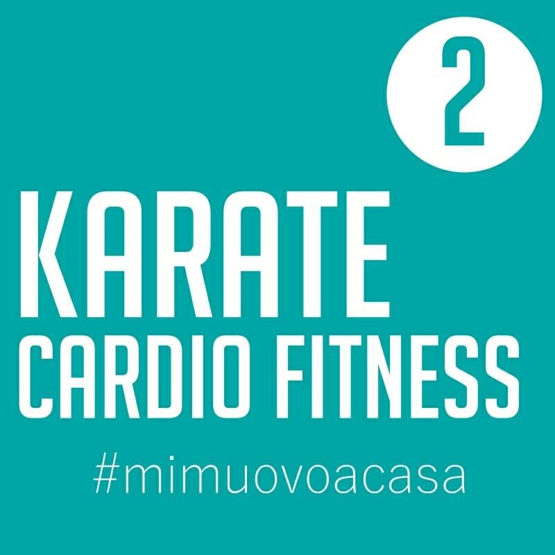 karate-cardio-fitness-video-img2
