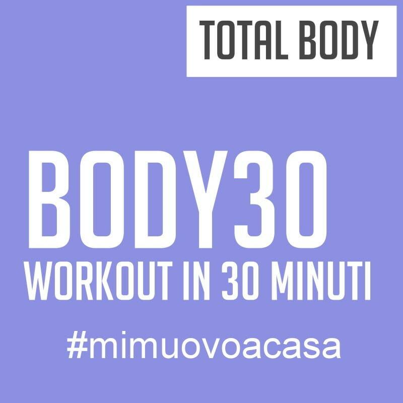 body 30