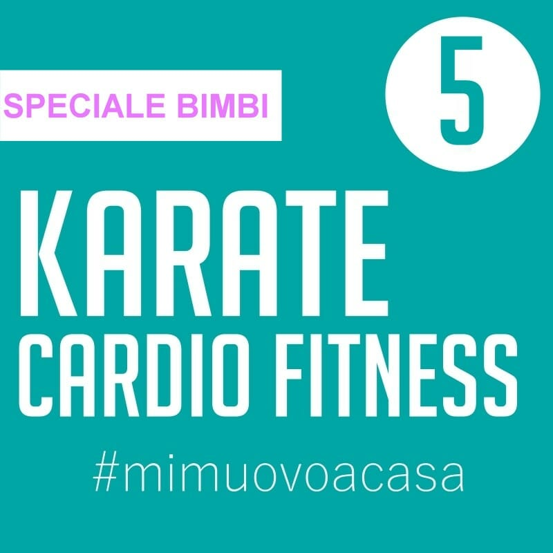 karate-cardio-fitness-video-img5