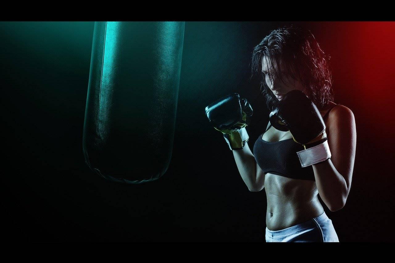 fit box workout